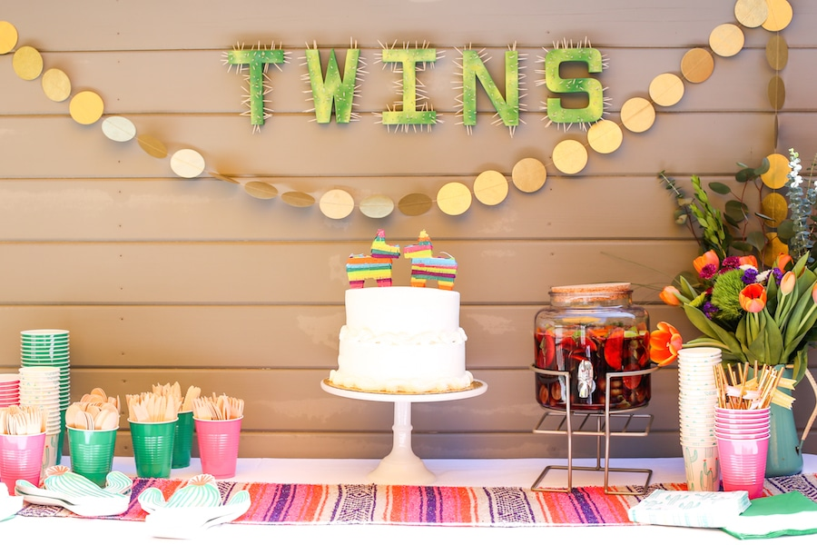 Twin Baby Shower Ideas: Party For Two Made Easy