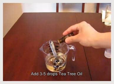 tea-tree-oil-3