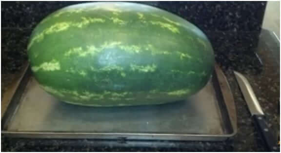 Place-watermelon-on-a-baking-pan